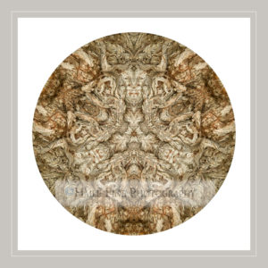 Tree BArk Mandala 1_©GSHaile